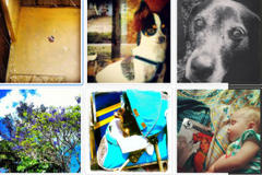 Tag Instagram Photos #GulfportPatch for Insta-Fame and Fun